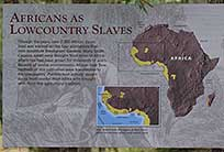 Africans as LowCountry Slaves